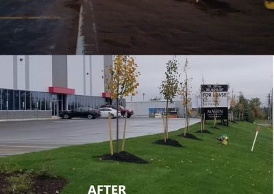 before& after Tire discounter